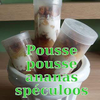 http://danslacuisinedhilary.blogspot.fr/2014/08/pousse-pousse-dananas-et-son-crumble.html