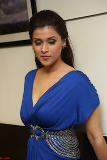 Mannara Chopra in Short Blue Dress at Rogue Movie Teaser Launch 1st March 2017 090.JPG