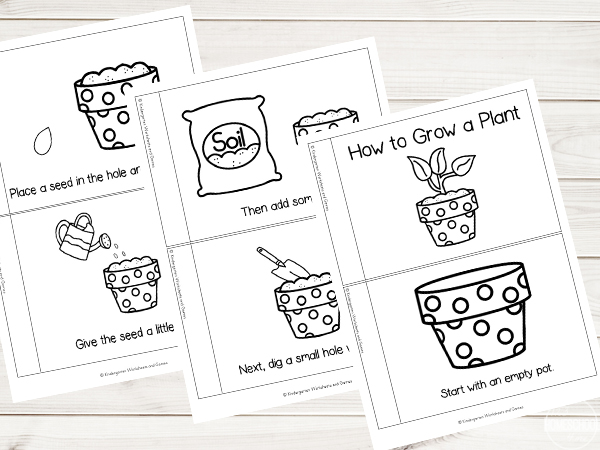 Kindergarten Worksheets and Games: FREE Grow a Plant