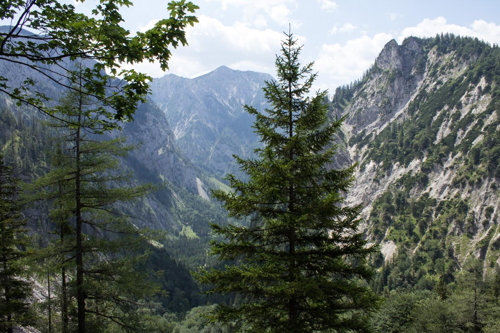 Zweitägige Wanderung von der Gsollkehre in Eisenerz über die Gsollalm zum Brandstein und weiter über Fobisalm und Hinterseeau zum Leopoldsteinersee - Im Schuss