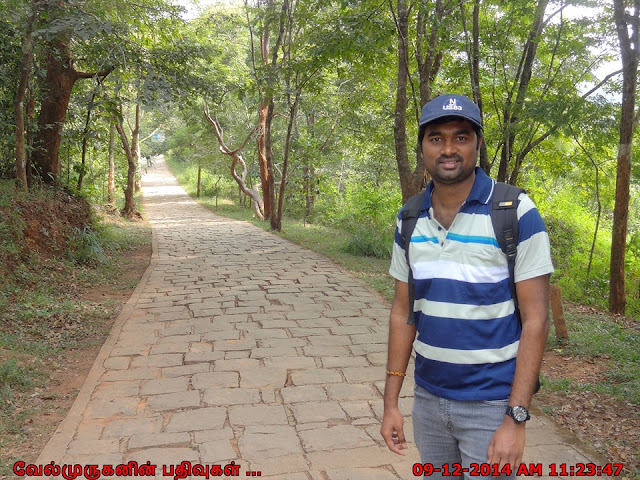 Soochipara Waterfalls Trail Wayanad