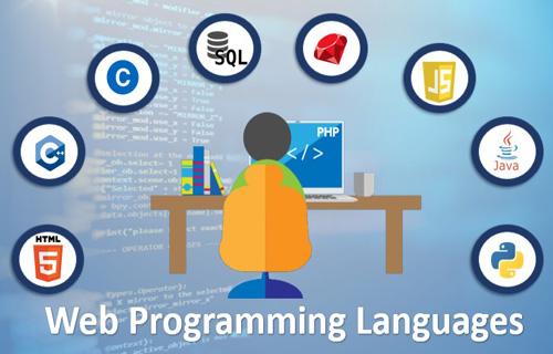 Web Programming Languages Course