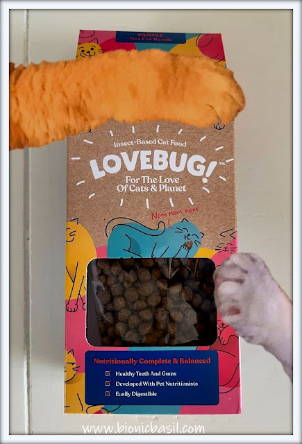 What's In The Box ©BionicBasil® Lovebug Insect-Based Cat Food Fudge & Melvyn