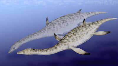 reptiles marinos del cretaceo Nichollssaura