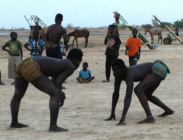 Culture, danse, événement, spectacle, tradition, ethnies, LEUKSENEGAL, Dakar, Sénégal, Afrique
