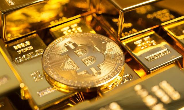highest cryptocurrency returns