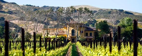 Vinícola Santa Rita em Santiago do Chile