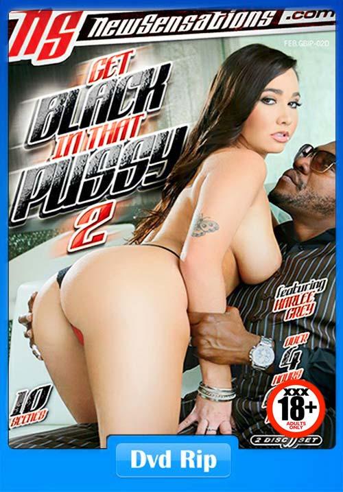 [18+] Get Black In That Pussy 2.2018 XXX DVDRip x264 Poster