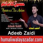 http://www.humaliwalayazadar.com/2017/08/adeeb-zaidi-nohay-2018.html