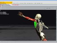 Software Anatomi Tubuh Manusia