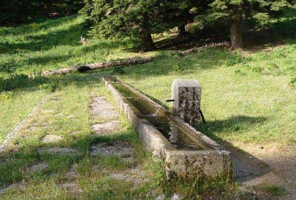 Έργο για τη μεταφορά νερού σε κτηνοτροφικές μονάδες του Δήμου Φαρκαδόνας χρηματοδοτεί και υλοποιεί η Περιφέρεια Θεσσαλίας