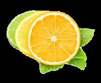 citrus-mayonnaise