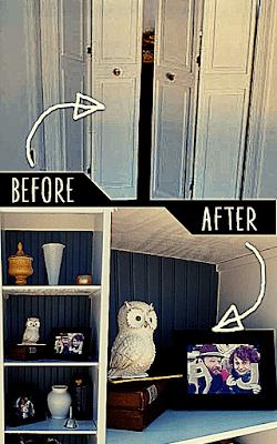 Bi-Fold Closet Door Bookshelf