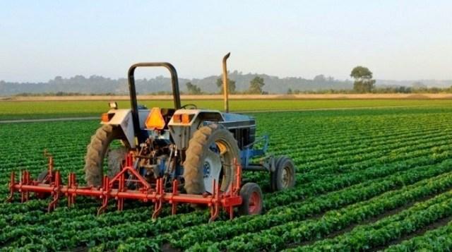 Manajemen Agribisnis: Pengertian, Ruang Lingkup, Fungsi, dan Aspeknya