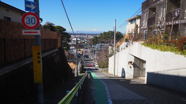 国分寺から多摩川まで国分寺崖線を上ったり下ったりポタリング。湧水や富士見スポットを巡るサイクリングコース。