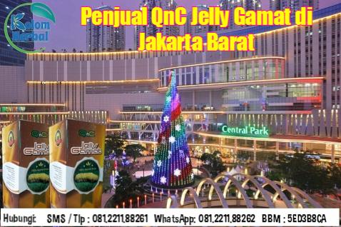 Penjual QnC Jelly Gamat di Jakarta Barat