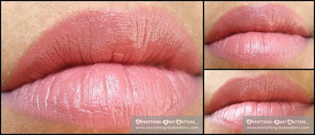 MAC Twig Lipstick Lip Swatches On Indian Skin