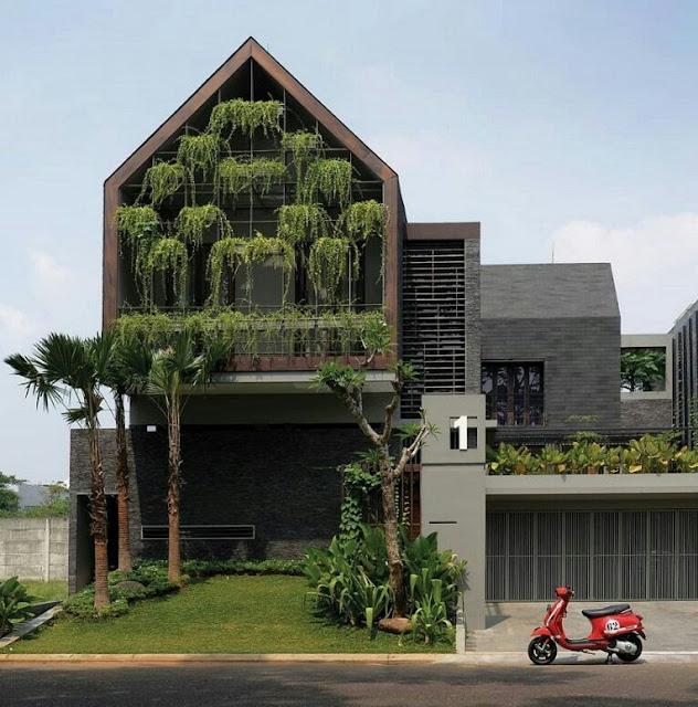 Minimalist 2-storey house with hanging garden