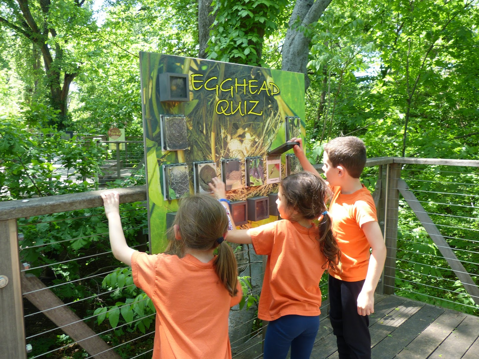 Paula S Primary Classroom Field Trips And Why I Love Them