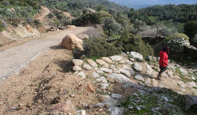 2,300-year-old road destroyed to make way for villagers' olive groves in SW Turkey