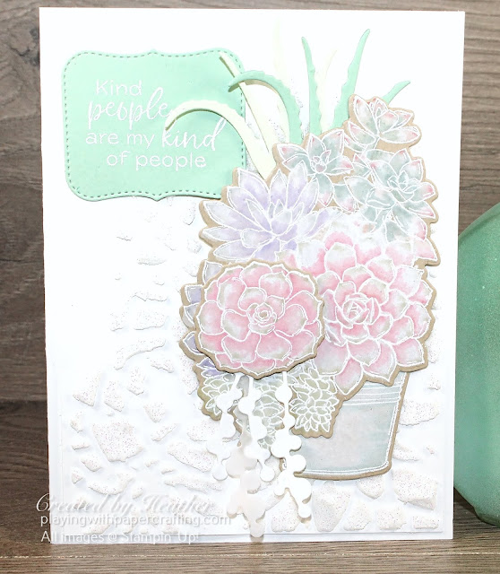 simply succulents for new at su blog hop 2