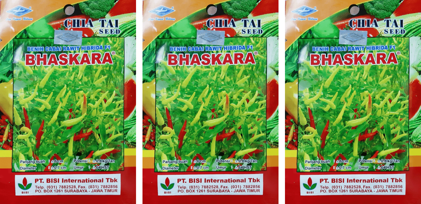benih cabai rawit, benih cabai rawit terbaik, benih cabai rawit unggul, benih cabai rawit tahan virus, benih cabai rawit hasil tinggi, cabai hibrida baskara, cabai bisi bhaskara,