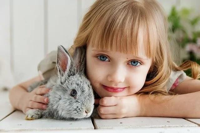 cute girl with rabit