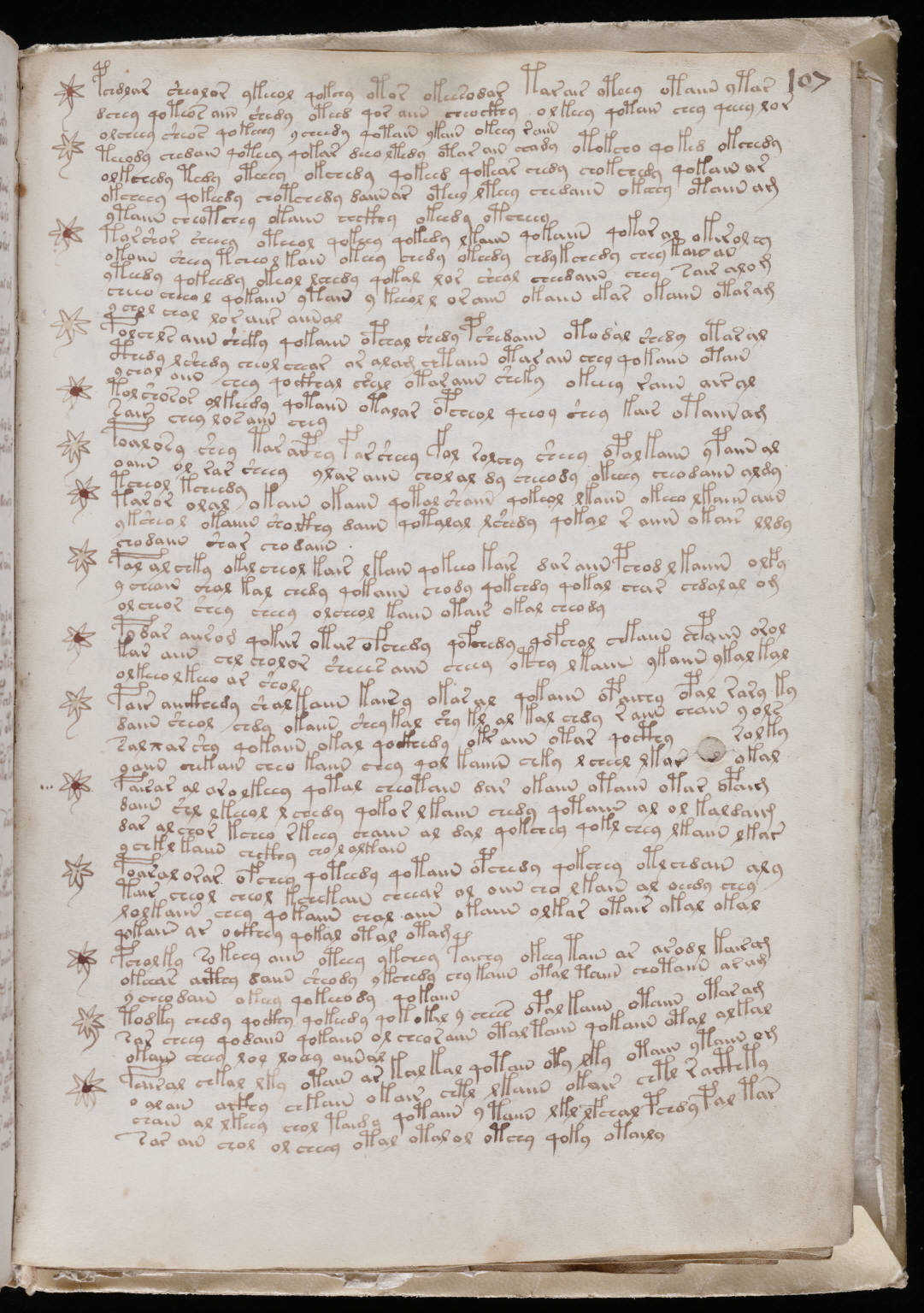manuscrito189
