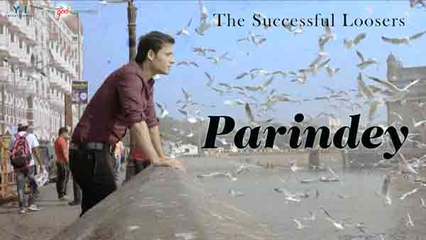 the-successful-loosers-mohammed-irfan-parindey