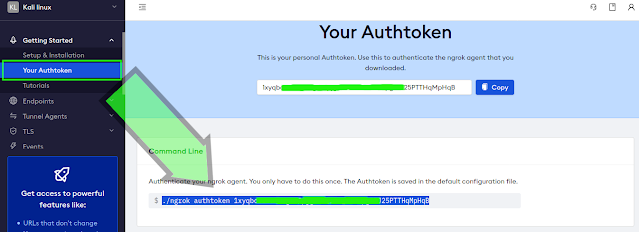 ngrok authentication command