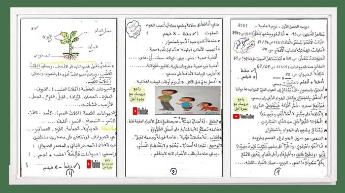 ملخصات الفصل الأول في التربية العلمية للسـنة الثانية ابتدائي