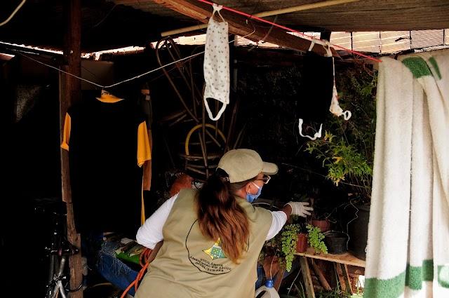 Dengue: mais de 900 mil imóveis vistoriados