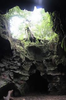 Cuevas en el Withlacoochee State Forest