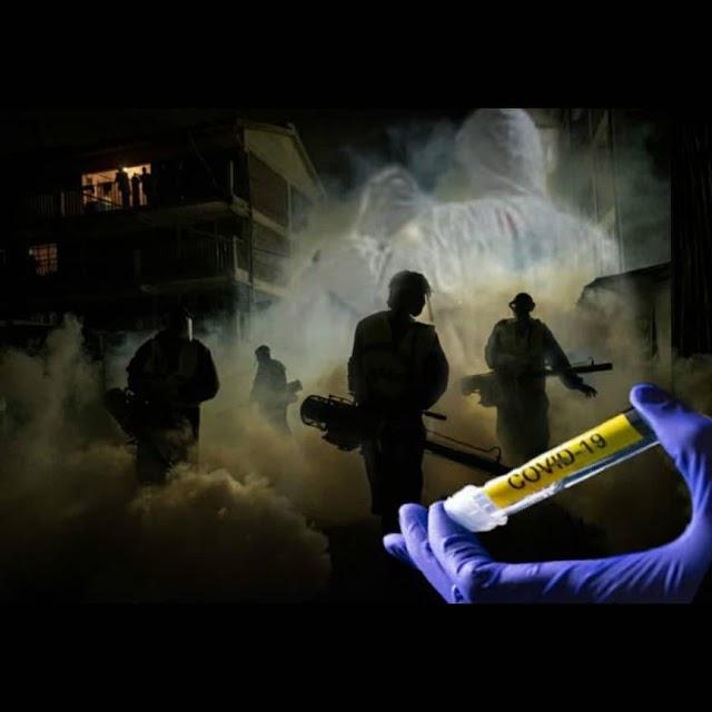 Opinión: Tanatofobia, Fumigando la Psiquis Social  Por: Deisy Viana
