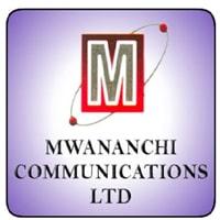 Freelance Business Executives at Mwananchi Communications Limited