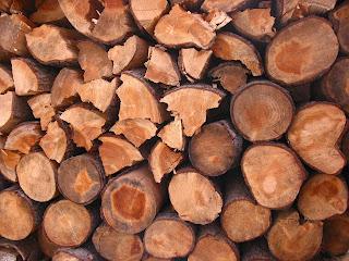 乾燥している薪