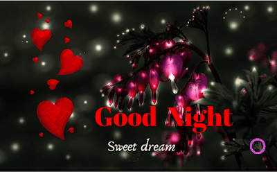 sweet-good-night-quotes-in-hindi