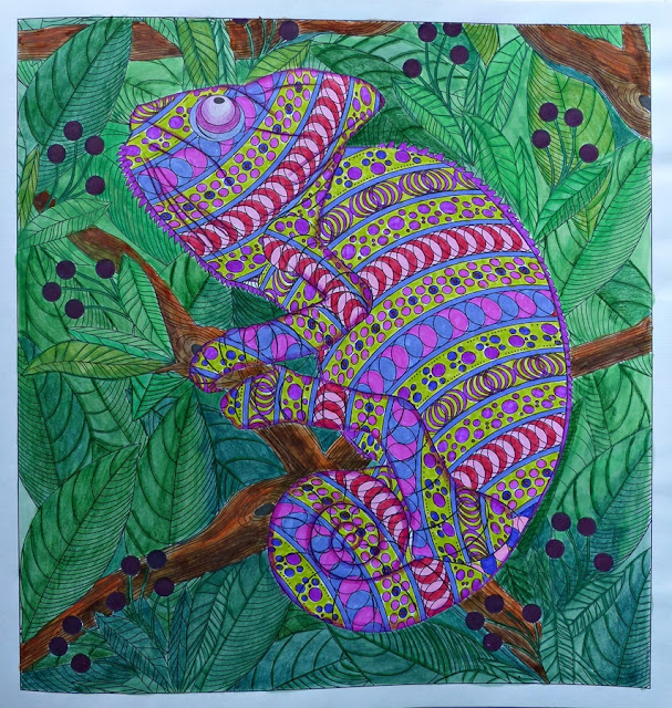 Hidden in the Jungle coloring book chameleon