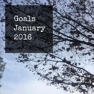 2016 is upon us. What are you hoping to accomplish this year?