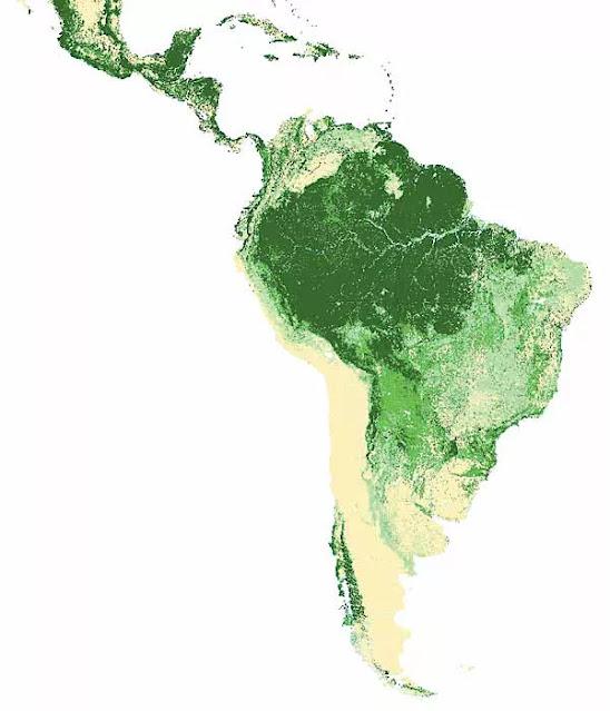 Peta Tutupan Hutan Amerika Latin dan Karibia