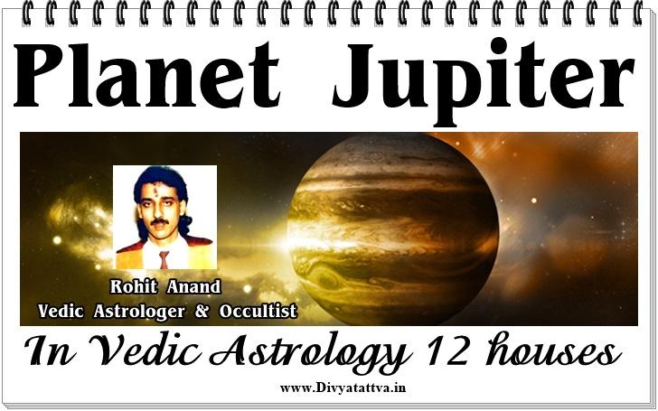 Free Horoscopes Online Tarot Readings Runes Lenormand Oracle Cards