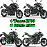 Pilihan Warna Baru Kawasaki Z900 di Tahun 2020