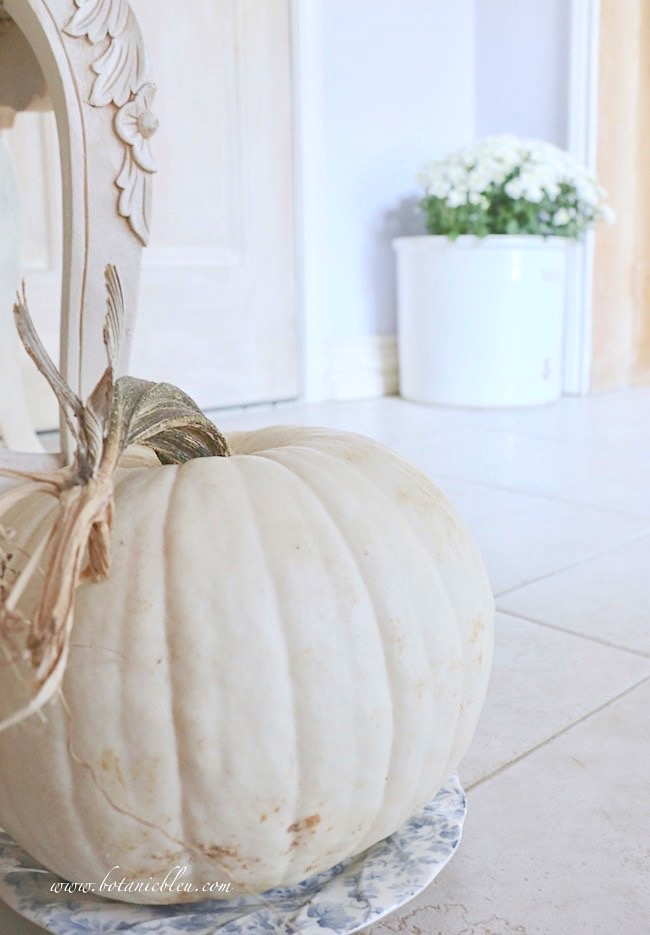 Fall blue and white cottage style small foyer lives large with large white pumpkin on blue floral salad plate