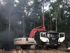 Amazônia: Operação Verde Brasil aplicou quase R$ 100 milhões em multas
