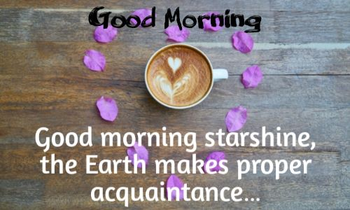 Good Morning WhatsApp Status, Good Morning Status, Good Morning in English SMS, Good Morning Status Download, Good Morning Status Love