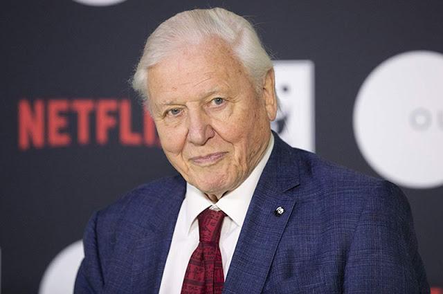 Sir David Attenborough, narrador de Nuestro Planeta (Our Planet)