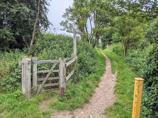 Continue heading NE on Hertingfordbury bridleway 2 - point 8