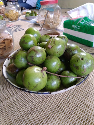 Tradisi Saparan Kampung Susu Sumogawe Kab. Semarang