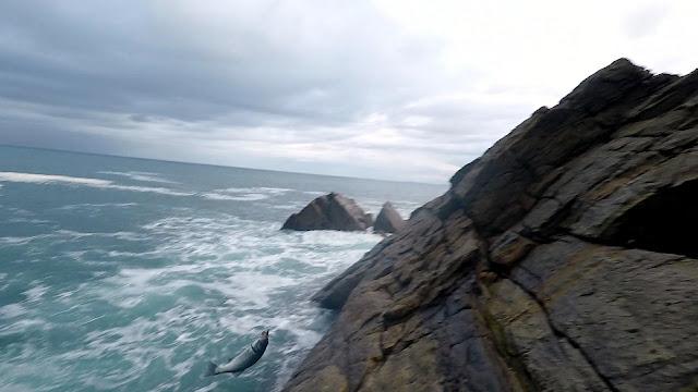 ALTURA - Spinning desde acantilado, escenario complicado de pesca