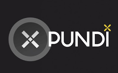Pundi X (NPXS) Image